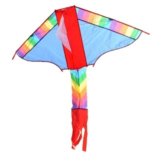 17050  Drachen COLOUR 102x57