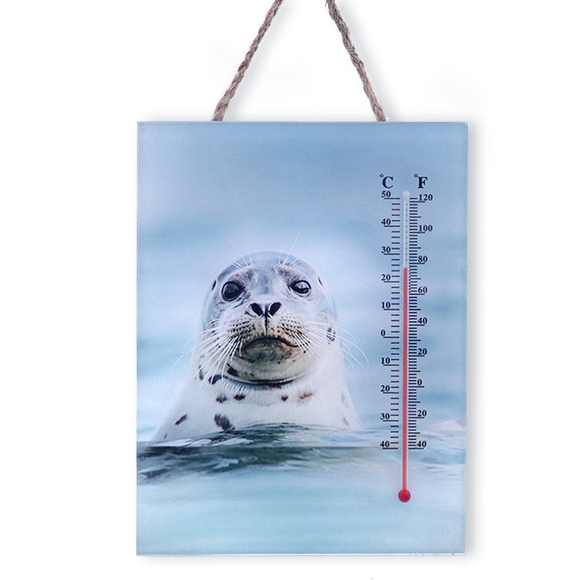 20412 Thermometer Robbe,20x15cm