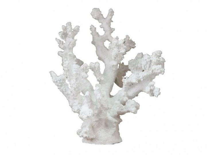 23301 Korale weiß 17x17x20cm