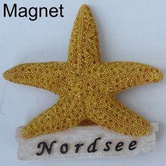 25203 Magnet Seestern Nordsee 9cm