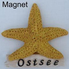25204 Magnet Seestern Ostsee 9cm