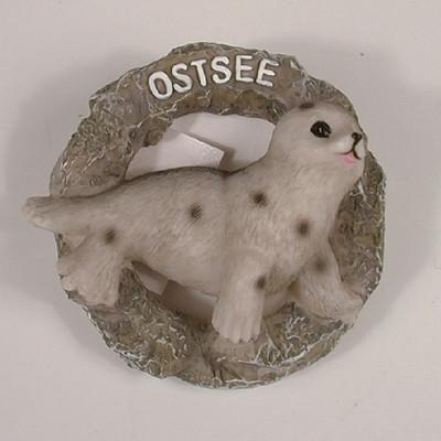 25273 Seehund im Netzring  OSTSEE