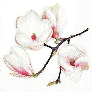 42677 Servietten Weiße Magnolie,weiß