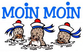 23017  Becher Seehunde MOIN MOIN